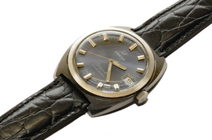 ENICAR Sherpa D Automatic