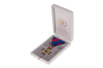 Silbernes Ehrenzeichen Ärztekammer Wien + Miniaturen