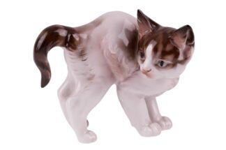 Rosenthal stehende Katze mit Katzenbuckel