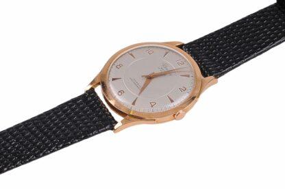 Fleuron Watch 17 Rubis